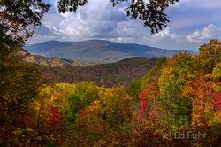 Smoky Mountain Fall 2016 - Before the Fire