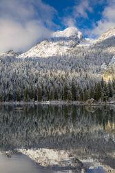 aspen, snow, autumn, string lake