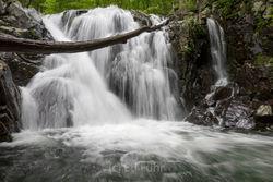 Shenandoah Waterfalls - Spring 2017