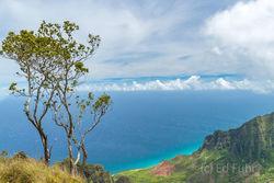 Kauai, waterfall, canyon, aerial, napali,