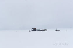barren, landscape, desolate, Tetons, Grand Teton