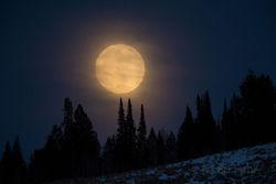 moon, tetons, winter, , Grand Teton