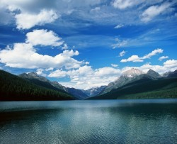 Bowman Lake, Glacier