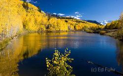 Cushman Lake II