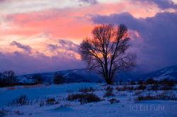 Tetons, Grand Teton