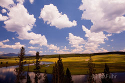 yellowstone, photos,