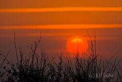 Kiawah Island Sunrise