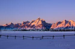 Winter Pasture at Sunrise