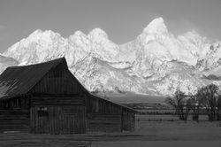 moulton barn, tetons, sunrise