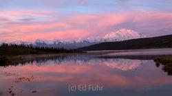 Denali at Sunrise