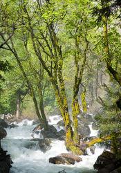 Downstream from Bridalveil Falls