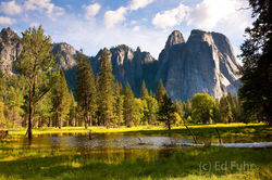 Cathedral Rock and Meadow