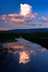 pond, farm, reflect, teton