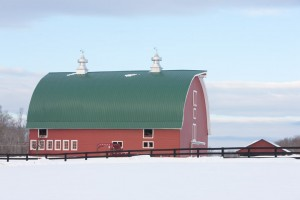 Red Barn in Green Springs