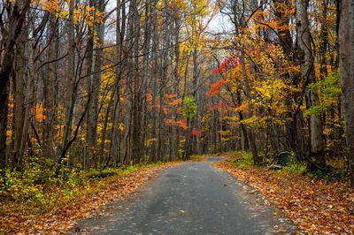 Smoky Mountain Autumn Drive