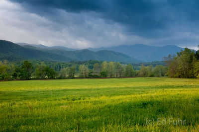 cades cove, loop road,