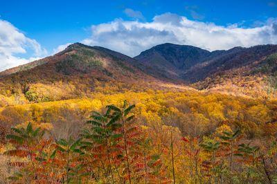 Mount Leconte Fall