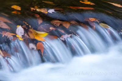 Autumn Cascade on the West Prong