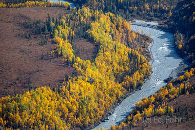 denali national park, photography, images, autumn, fall, mountains, aerial