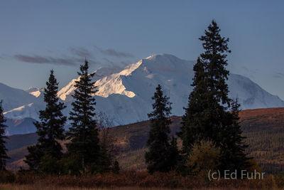 denali national park, photography, images, autumn, fall, mountains, 2019