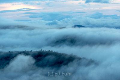 Islands in the Fog, Buck Hollow