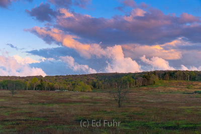 Springtime Sunrise at Big Meadows