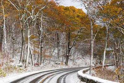 Skyline Drive Autumn Snow