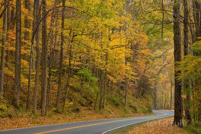 Autumn Drive, Great Smoky Mountains, 2016
