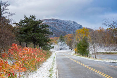 A Colorful Entrance to Stony Man
