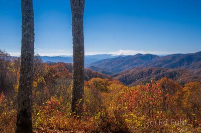 Deep Creek Autumn View