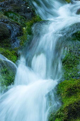 Cascade on the West Prong