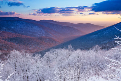 Winter View of the Piedmont