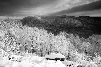 A View of Stony Man Mountain