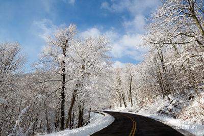 A Beautiful Drive