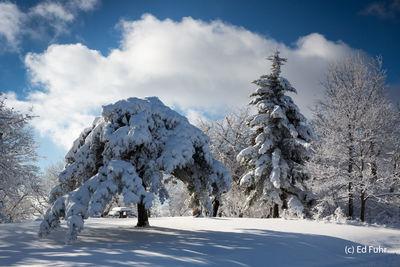 Pinnacles Picnic in Winter