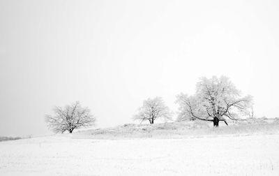 Shenandoah, Shenandoah National Park, photo, photography, images, mountains, wilderness, Virginia, winter, snow