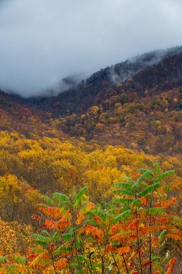 Clouds Over Mount Leconte