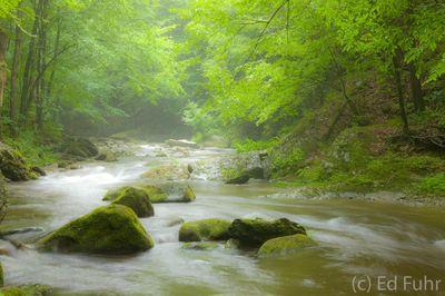 Little River Spring