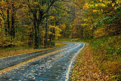 Autumn Curve on Skyline Drive