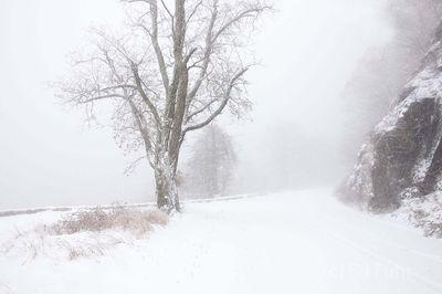 Skyline Drive in Winter