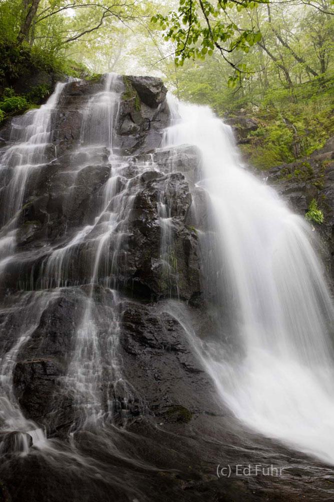 Shenandoah, Shenandoah National Park, photo, photography, images, mountains, wilderness, Virginia, waterfall, photo