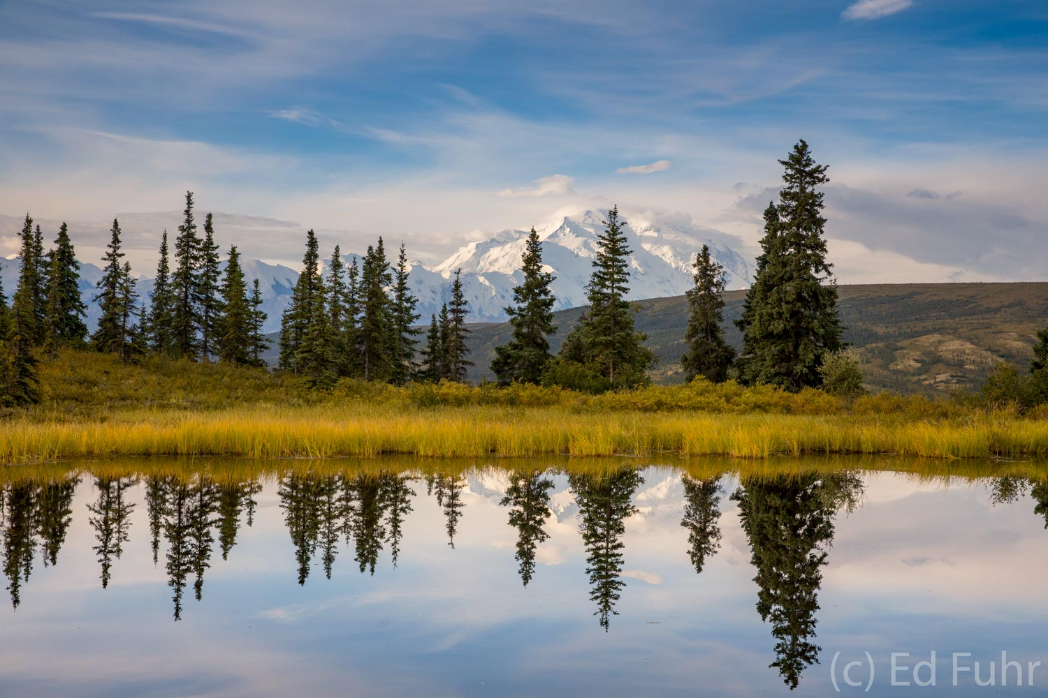 Mount Denali rises in the morning distance, reflecting in the still waters of Nugget Pond.