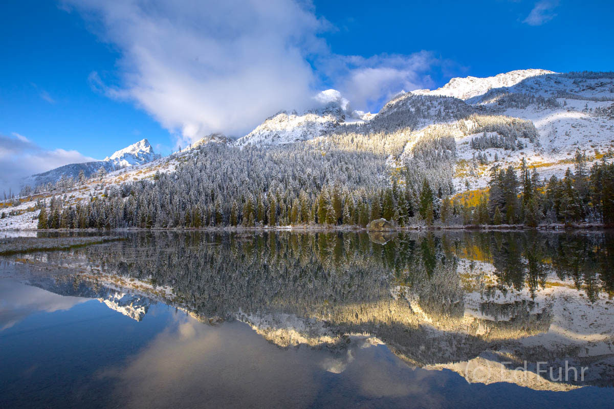 aspen, snow, autumn, string lake, photo
