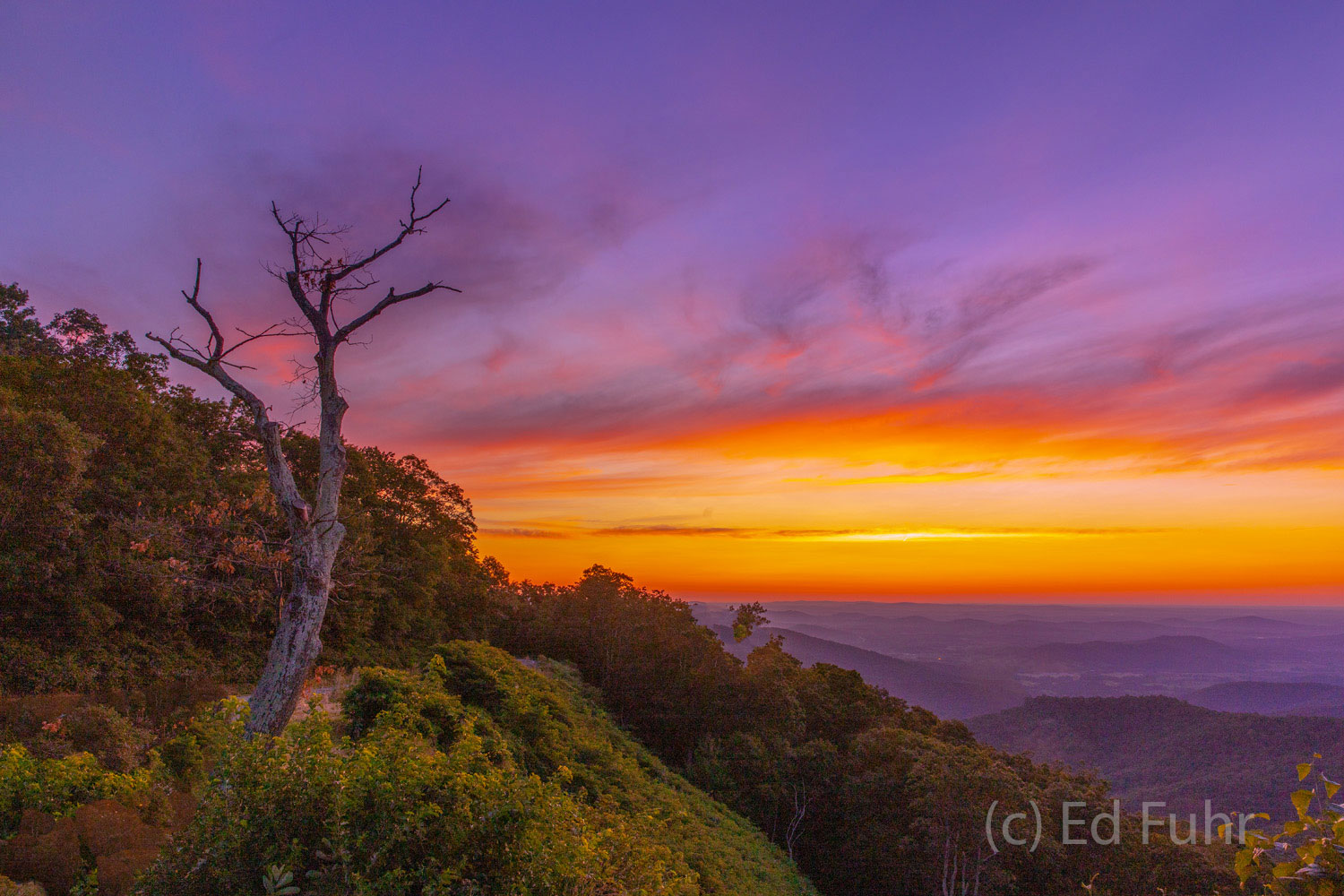 Hazel Mountain, sunrise, photo