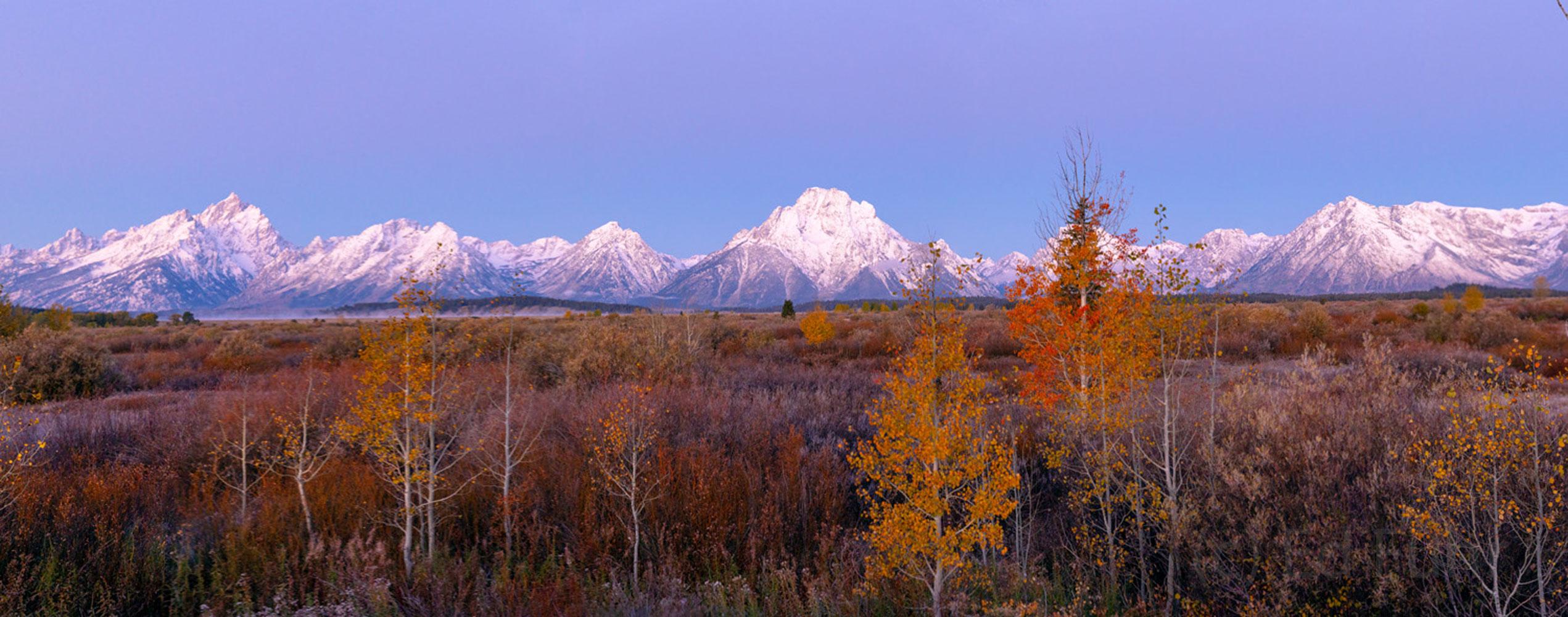 willow flat, autumn, sunrise, Tetons, Grand Teton, photo