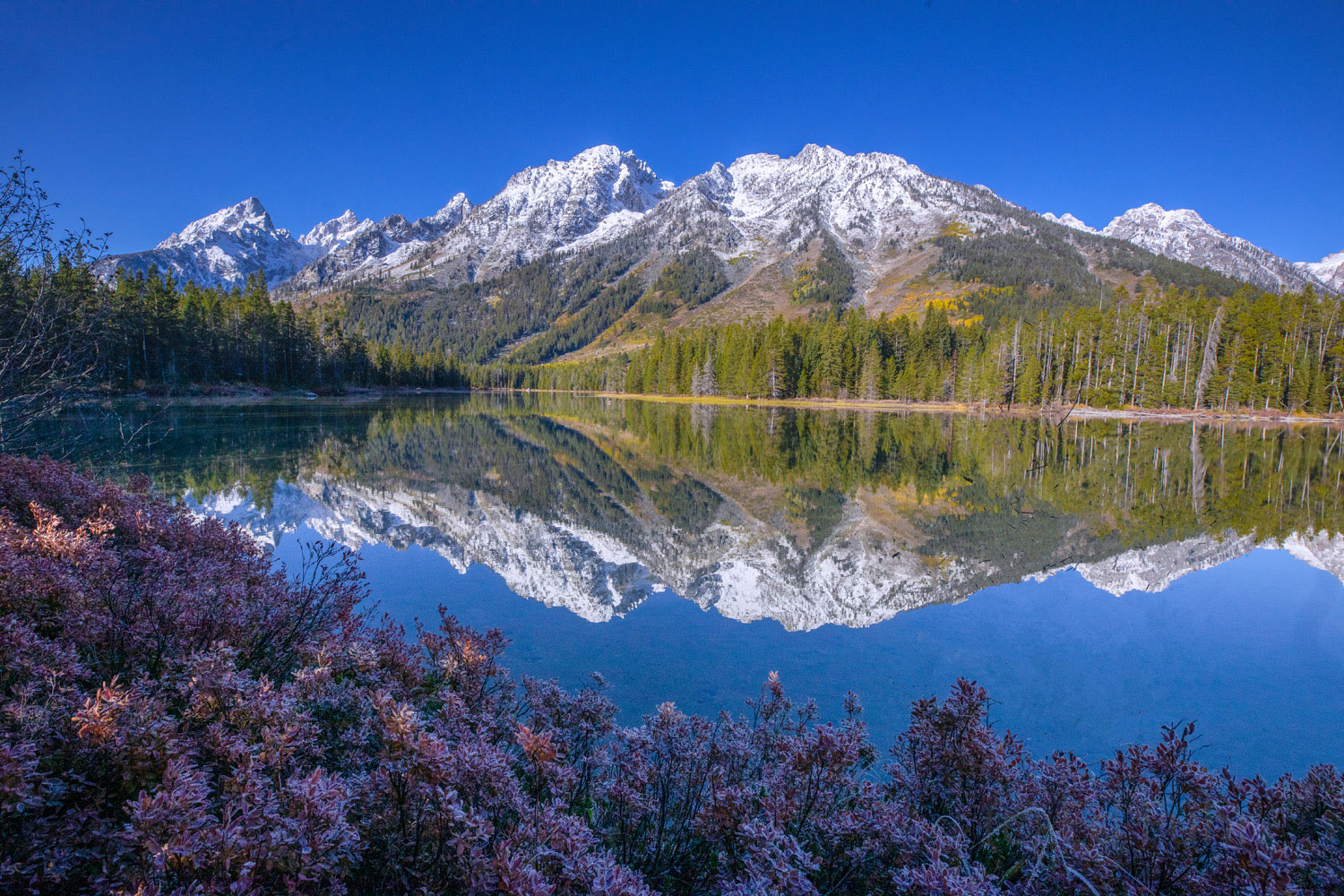 string lake, reflection, autumn, Tetons, Grand Teton, photo