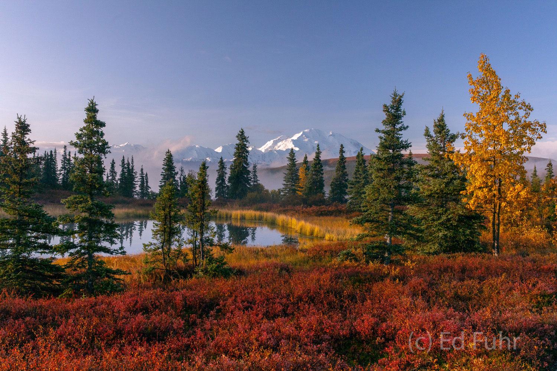 denali national park, photography, images, autumn, fall, mountains,, photo