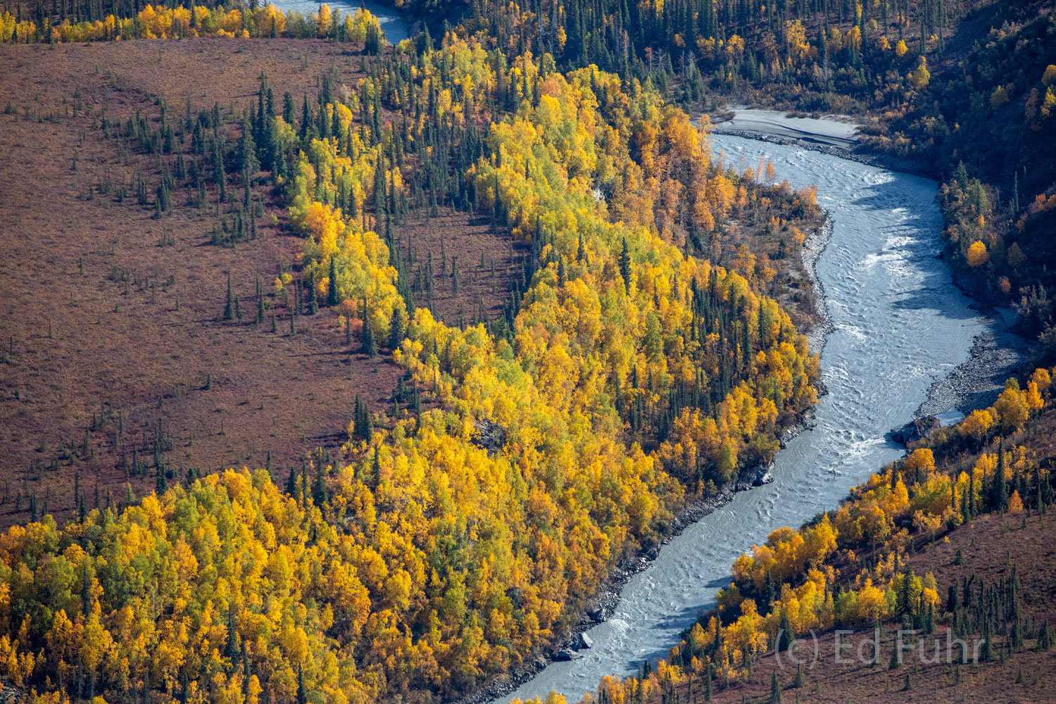 denali national park, photography, images, autumn, fall, mountains, aerial, photo