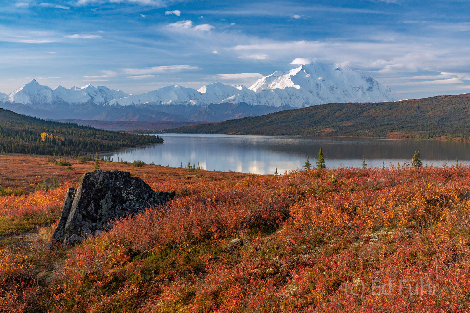 A large boulder is a reminder of the glacial forces that shaped the Denali landscape
