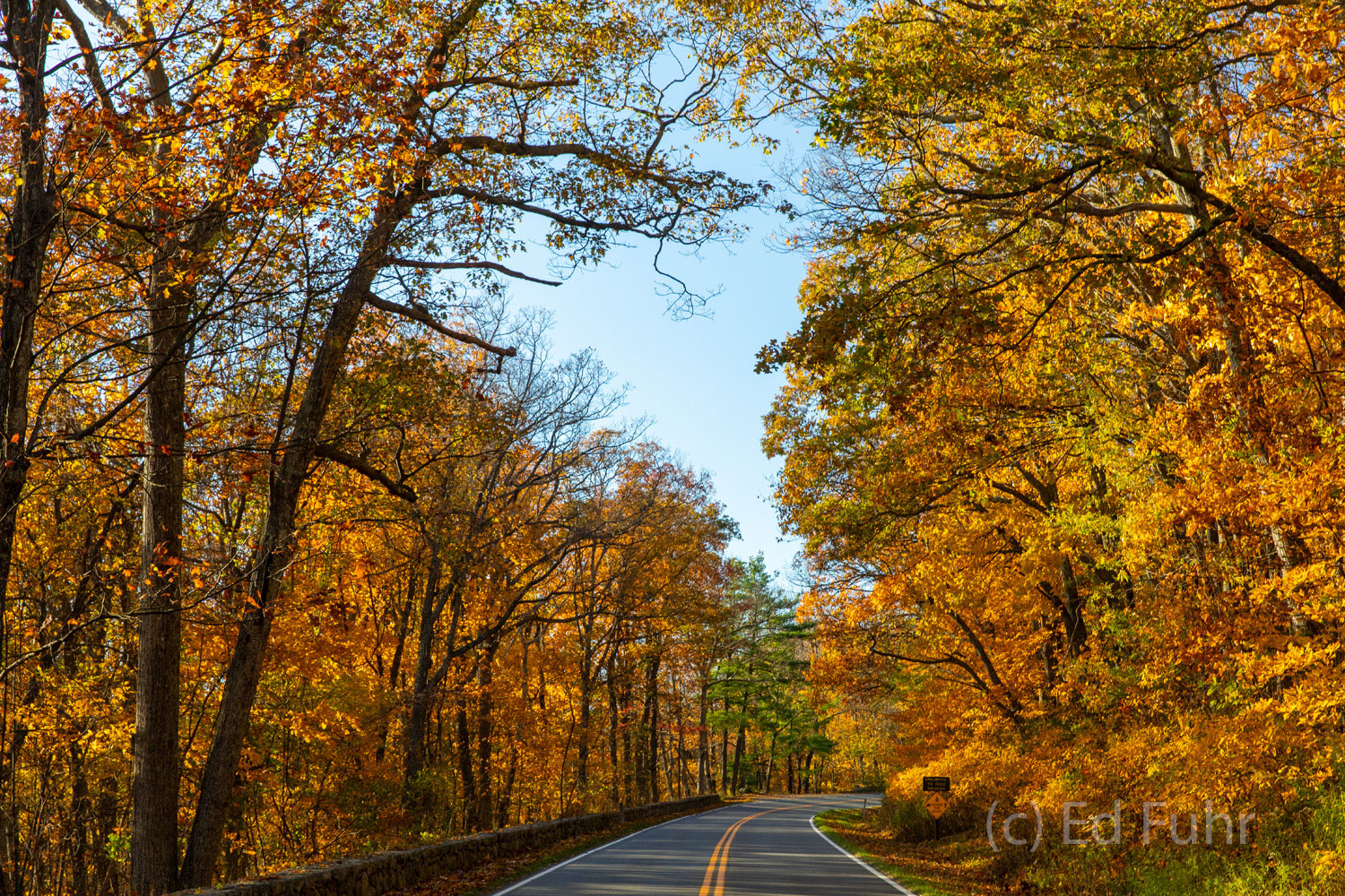 skyline drive, autumn, foliage, photo